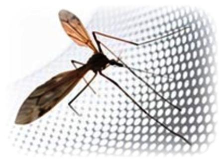 комар и москитная сетка